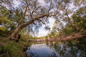Chillagoe waterway