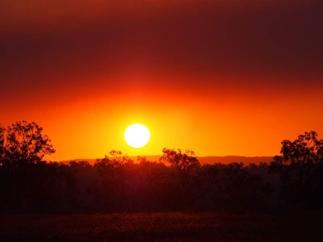 sunset mareeba